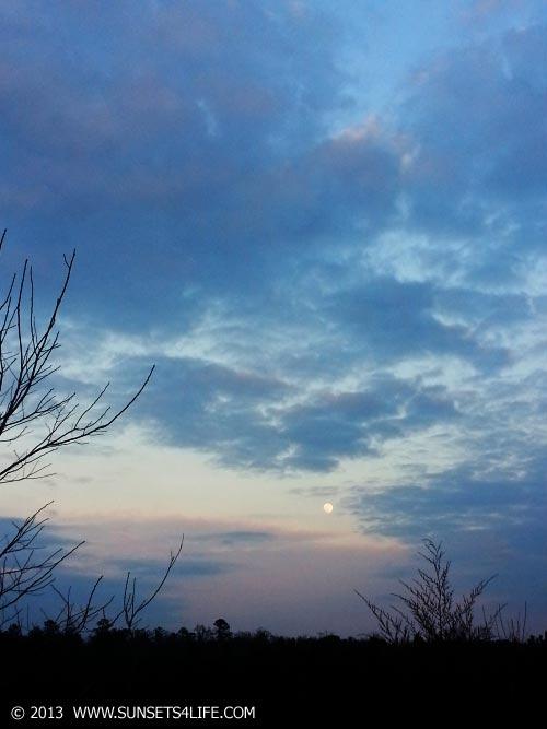 Moonlight 01-25-13-FRI